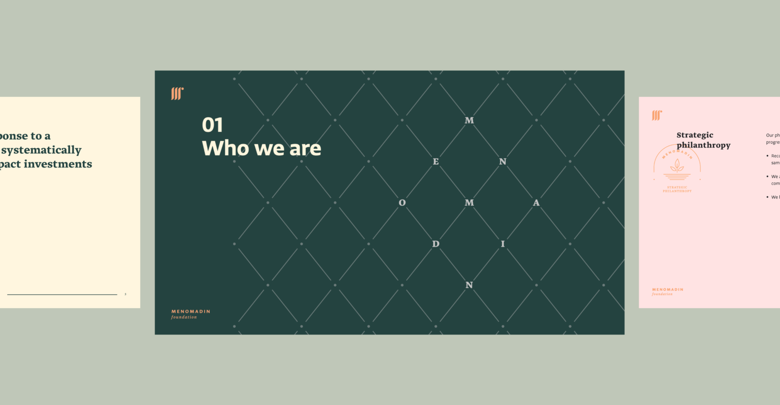 Branding and Visual Identity for the Menomadin Foundation 5