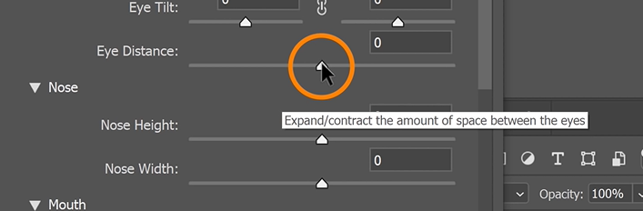 Explore each adjustment slider or use the handles to adjust the face.