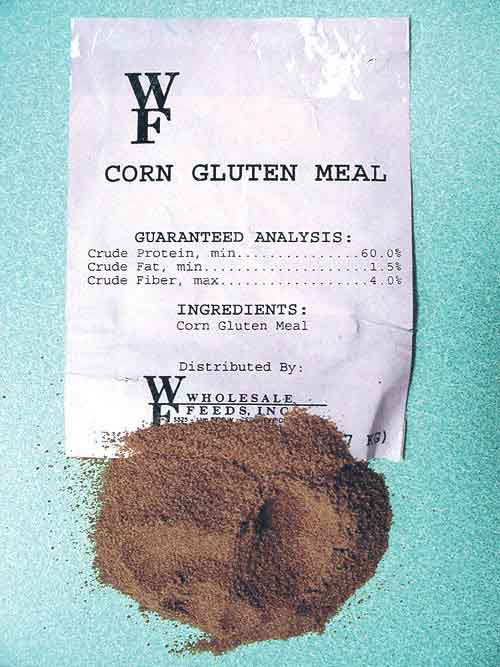 Corn gluten meal serves as a preemergence herbicide and then deteriorates into a soil nutrient supply source