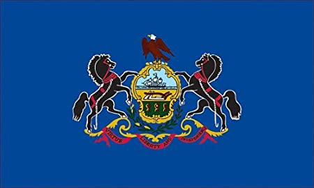"The Pennsylvaia State Flag. It was show ponies on it and I have no idea why. It says ""Virtue, Liberty, and Independence."""