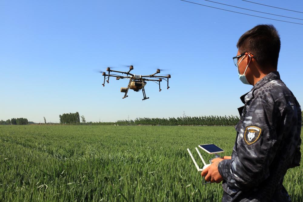 Drones estão promovendo uma revolução na agricultura chinesa. (Fonte: Shutterstock/chinahbzyg/Reprodução)