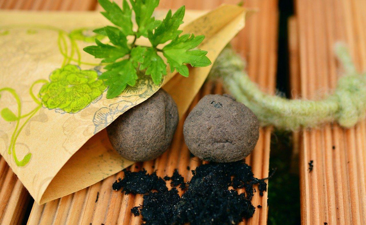 Manualidades sostenibles: Bombas de semillas