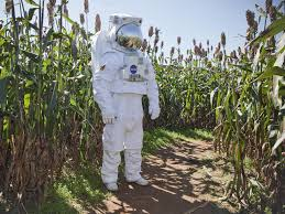 Image result for corn farming space