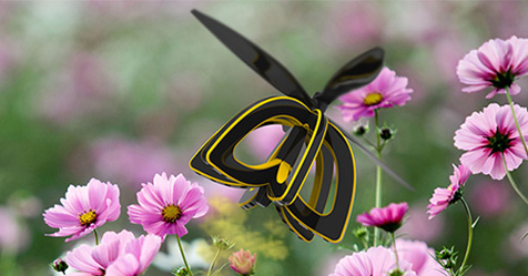 Plan Bee drone to help fight climate change