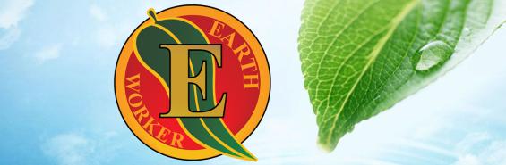 logo with leaf