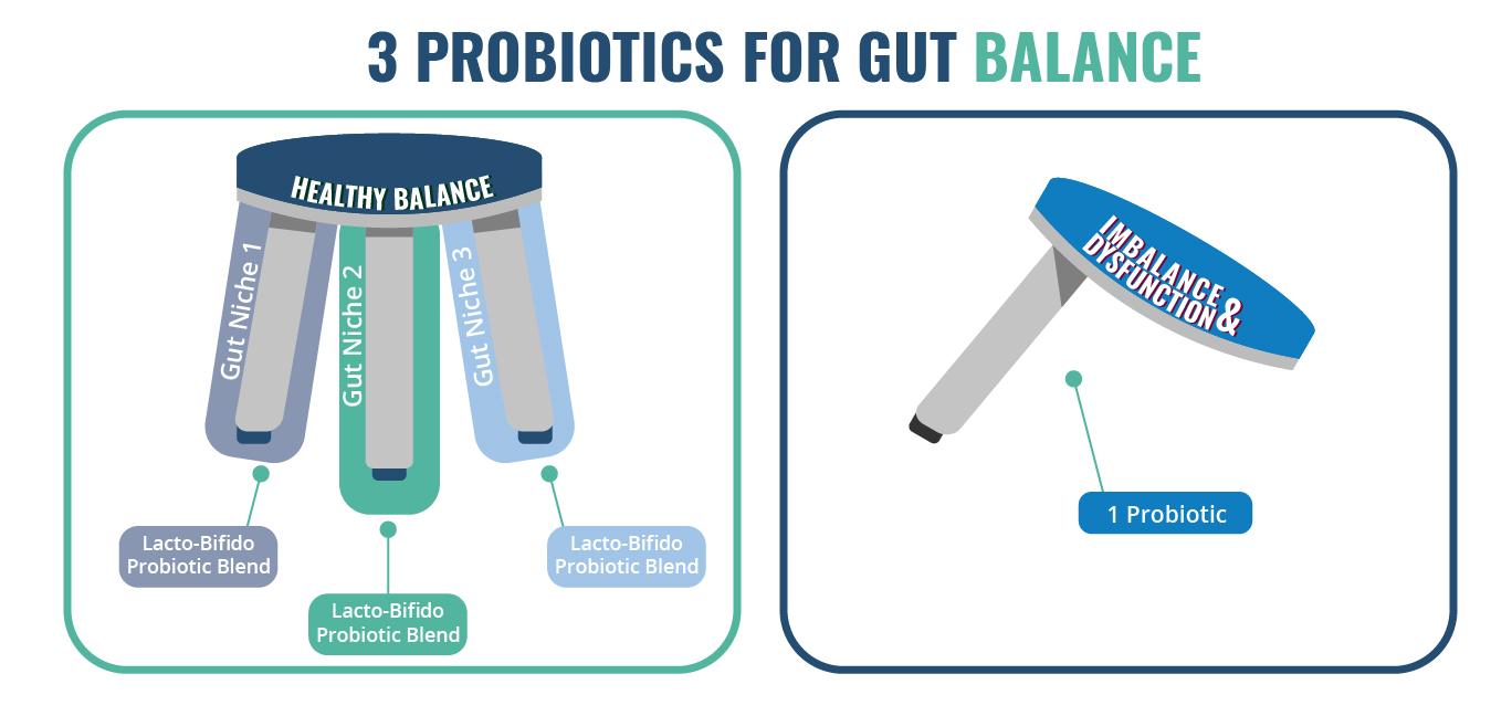 What are probiotics: Three categories of probiotics needed for gut balance