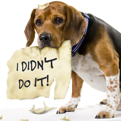 Image result for dog ate my homework