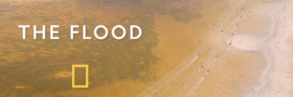 ../The%20Flood.jpg