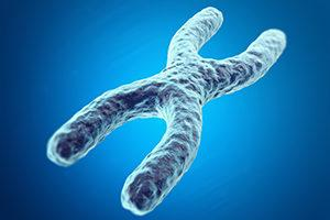 Image result for Genome Healing Techniques DNA