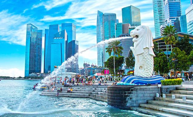 Đến với dịch vụ gửi hàng đi Singapore, hàng hoá của bạn sẽ được giao đúng chất lượng tới người nhận