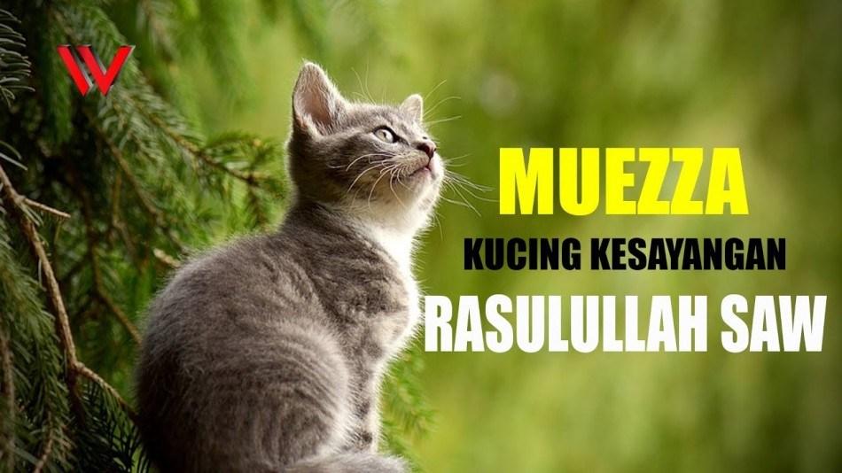 nama kucing islam kesayangan Nabi Muhammad SAW