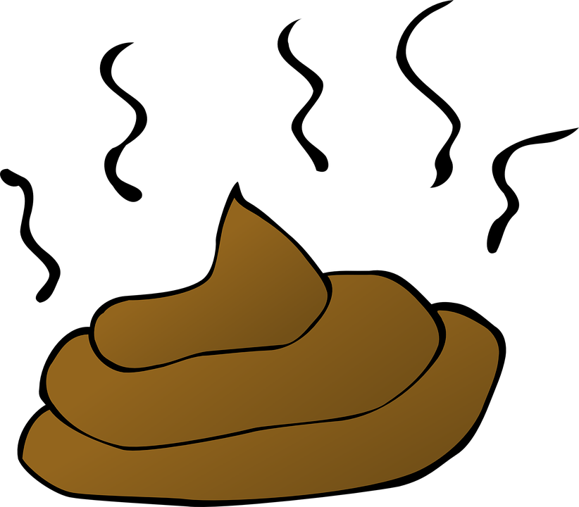 Free vector graphic: Poop, Feces, Smelly, Crap, Dog - Free Image ...