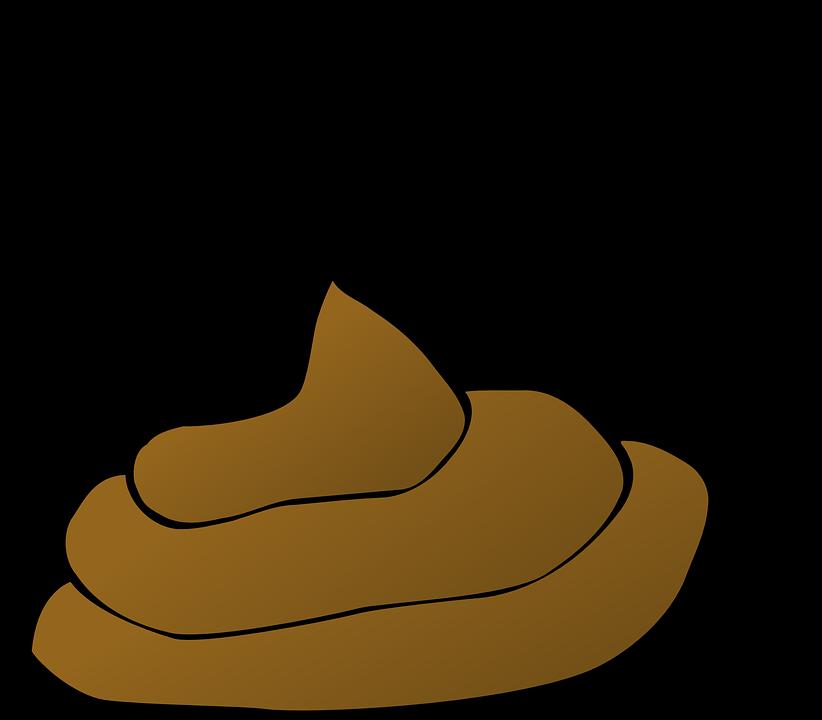 Free vector graphic: Poop, Feces, Smelly, Crap, Dog - Free Image ...