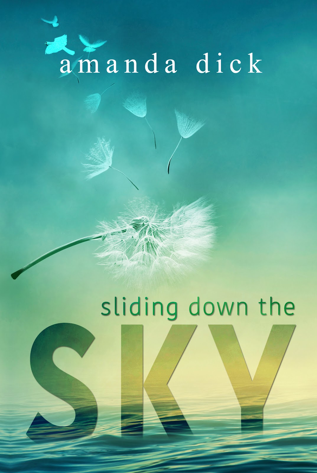 Sliding Down the Sky_ebook.jpg