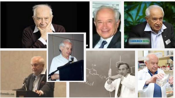 Dr. Mechoulam - THC discoverer