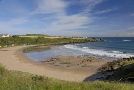 Coldingham Bay colourful beach hut bidders sought - BBC News