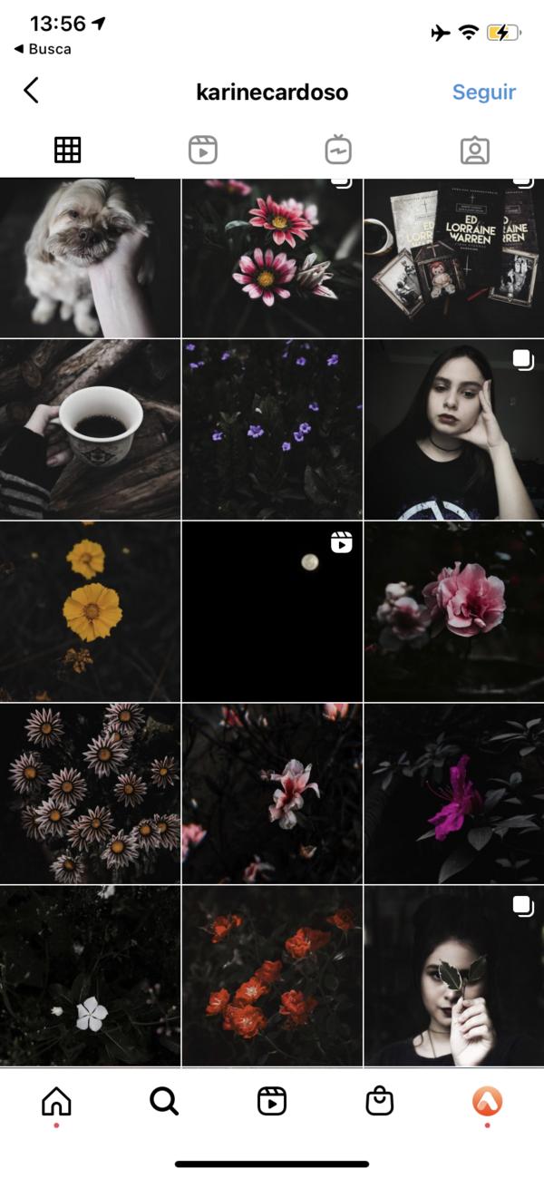 Print do perfil de um feed do instagram com fotos no estilo dark e fotos de flores