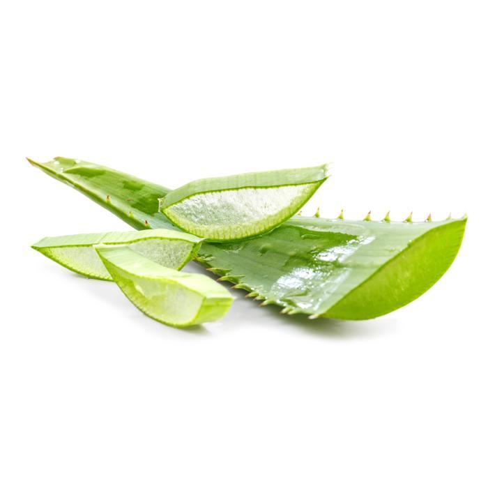 O imagine care conține verde  Descriere generată automat