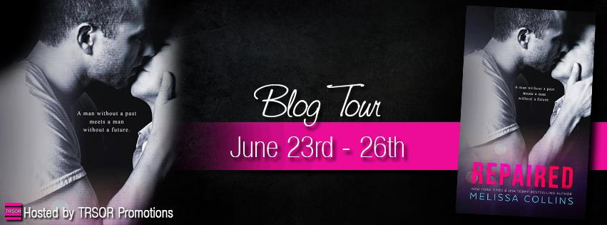 repaired blog tour.jpg