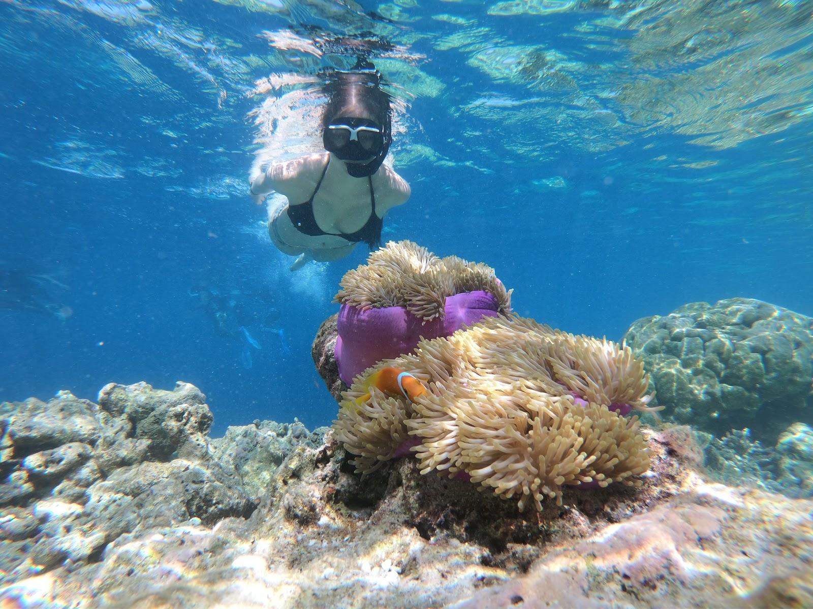 Image of Snorkeling at Bali