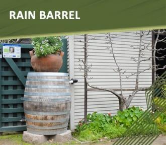 Apply for a Rain Barrel rebate