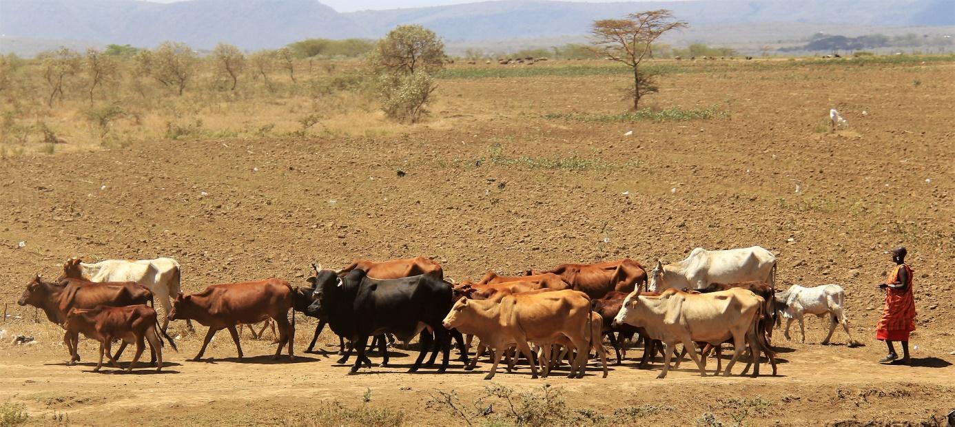 Kršćanska stranica za upoznavanje u Keniji