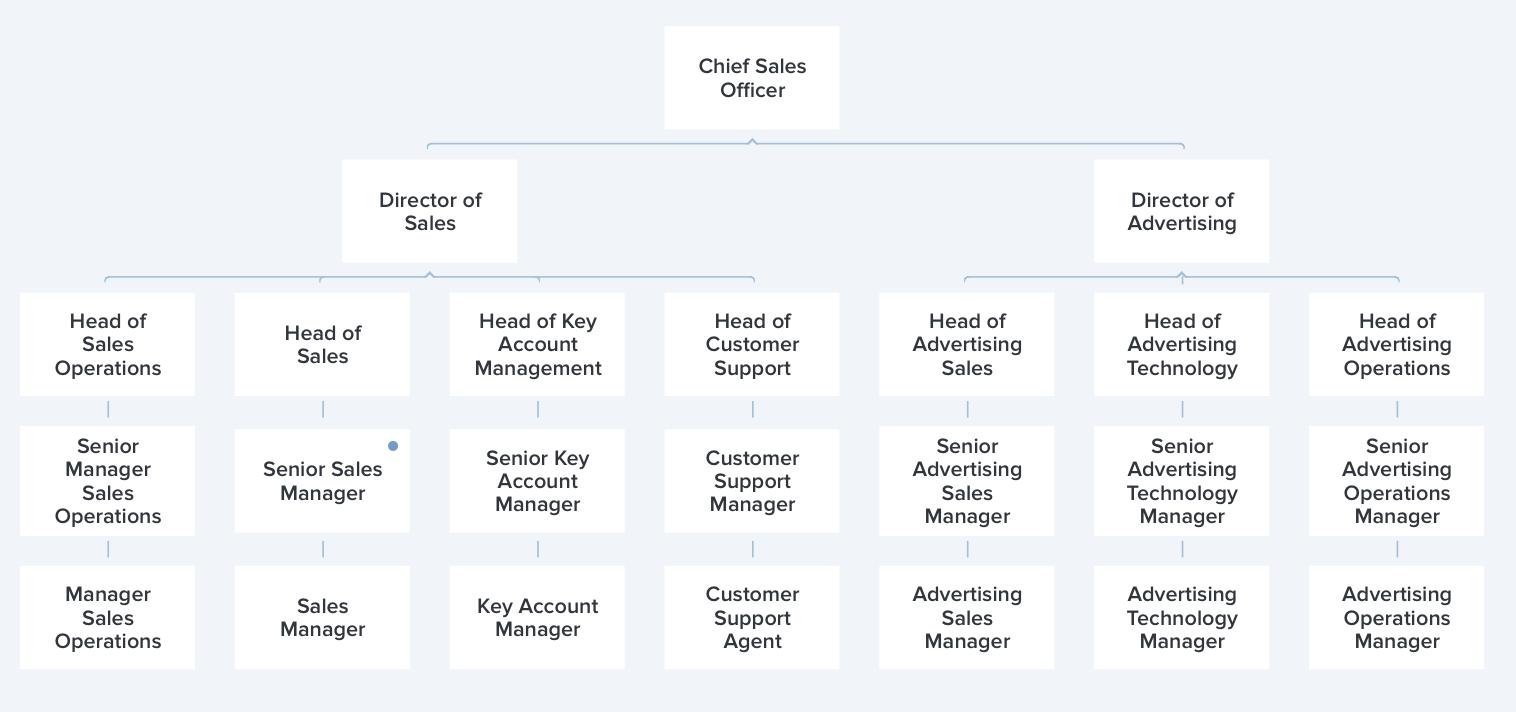 Karrierewege für Sales Manager