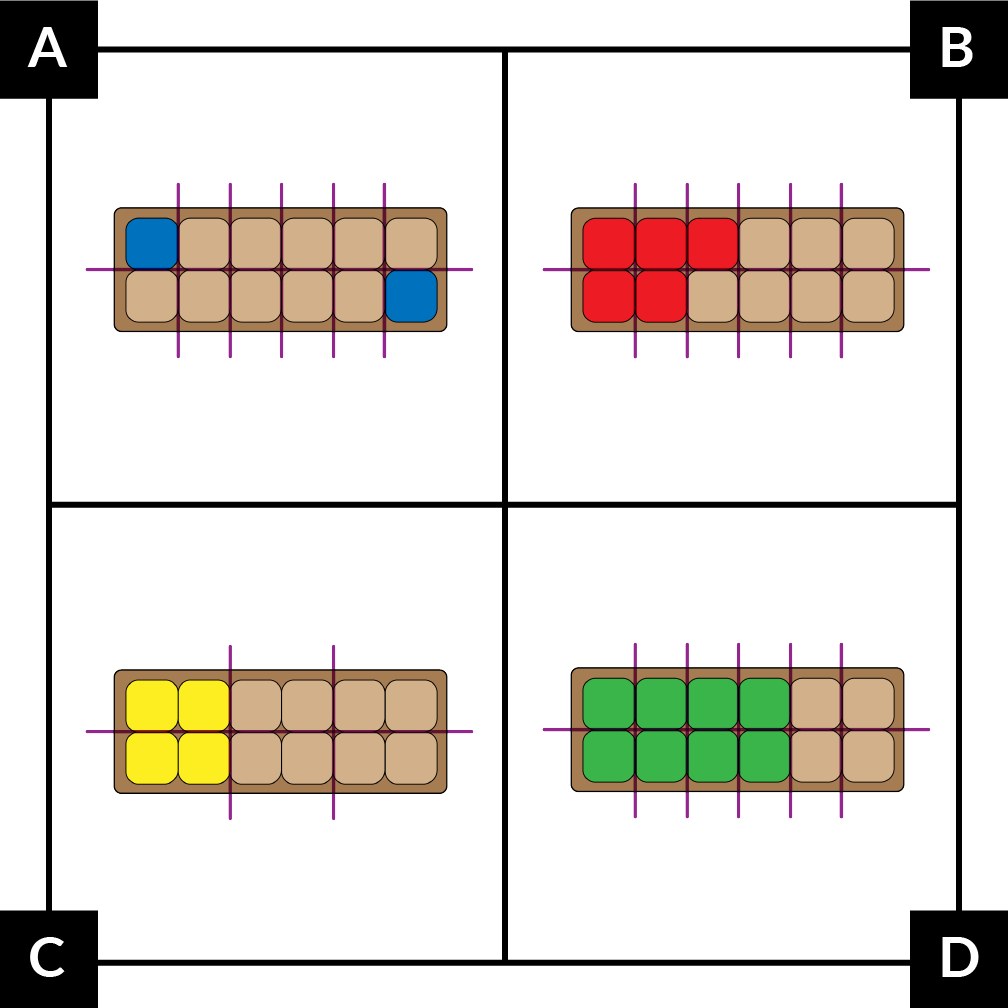 A. shows an egg carton model divided into 12 parts. 1 part in each row is blue but they do not touch. B. shows an egg carton model divided into 12 parts. 3 parts on the top and  2 parts on the bottom are red. C. shows an egg carton model divided into 6 equal parts. 1 part on the top and 1 part on the bottom are yellow. D. shows an egg carton model divided into 12 parts. 4 parts on the top and 4 parts on the bottom are green.