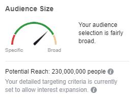 FacebookLandscapingAudienceSize