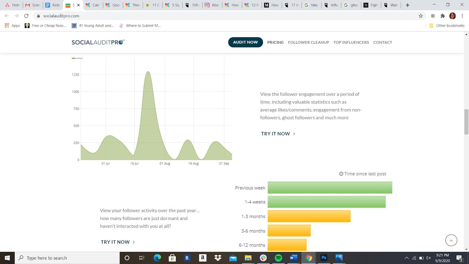 Instagram audit analytics