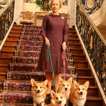 порода собак королевы англии