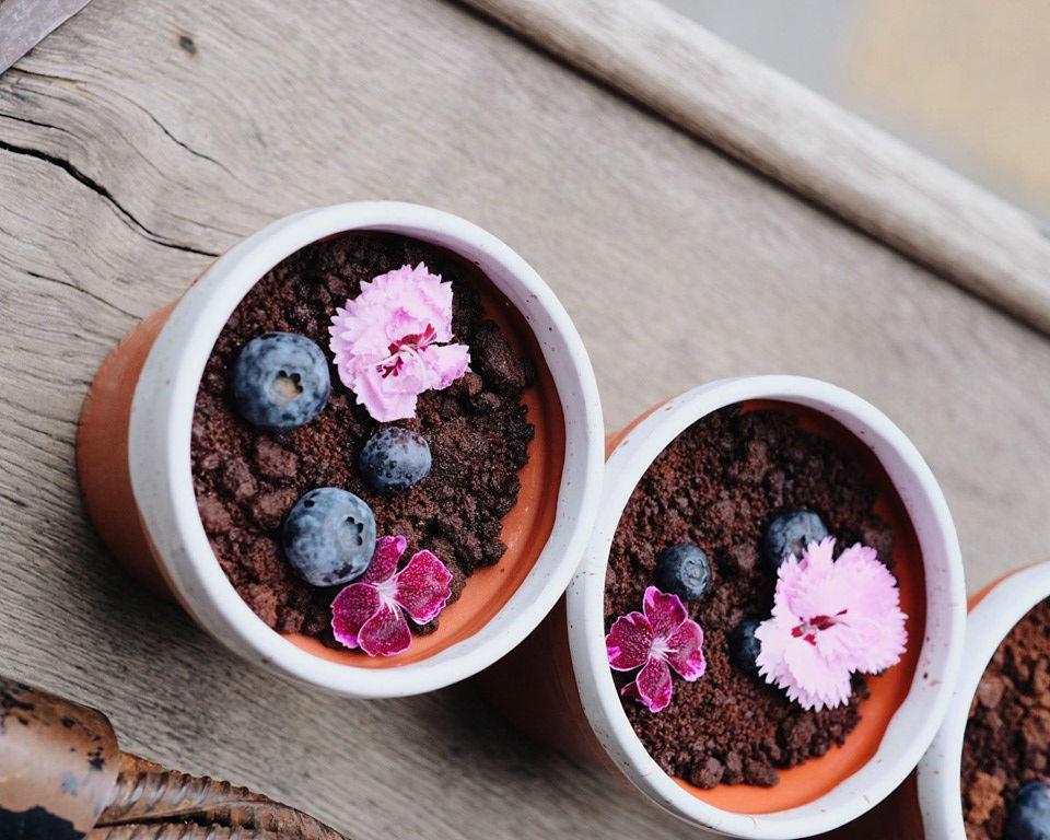Вы только не подумайте – это совсем не комнатные цветы, а самый настоящий десерт с малиновым кули, шоколадной землей, шоколадно-миндальной крошкой и крем чизом.