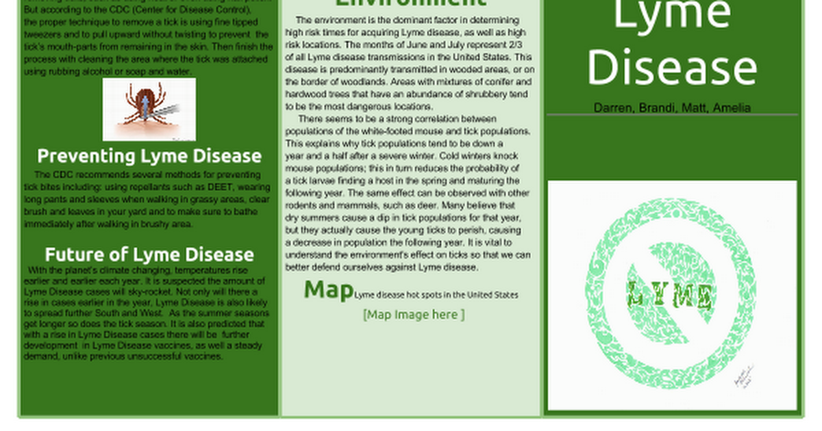 Lyme Disease Brochure Template   Google Docs vV5pZVrn