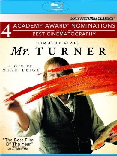 Filme Poster Sr. Turner  BDRip XviD Dual Audio & RMVB Dublado