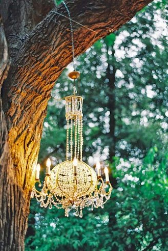 wedding tree decoration with a beautiful light