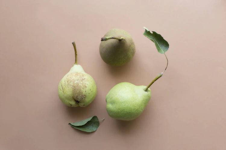 Good Quality Useable 10PCS Fruit Protection Bag