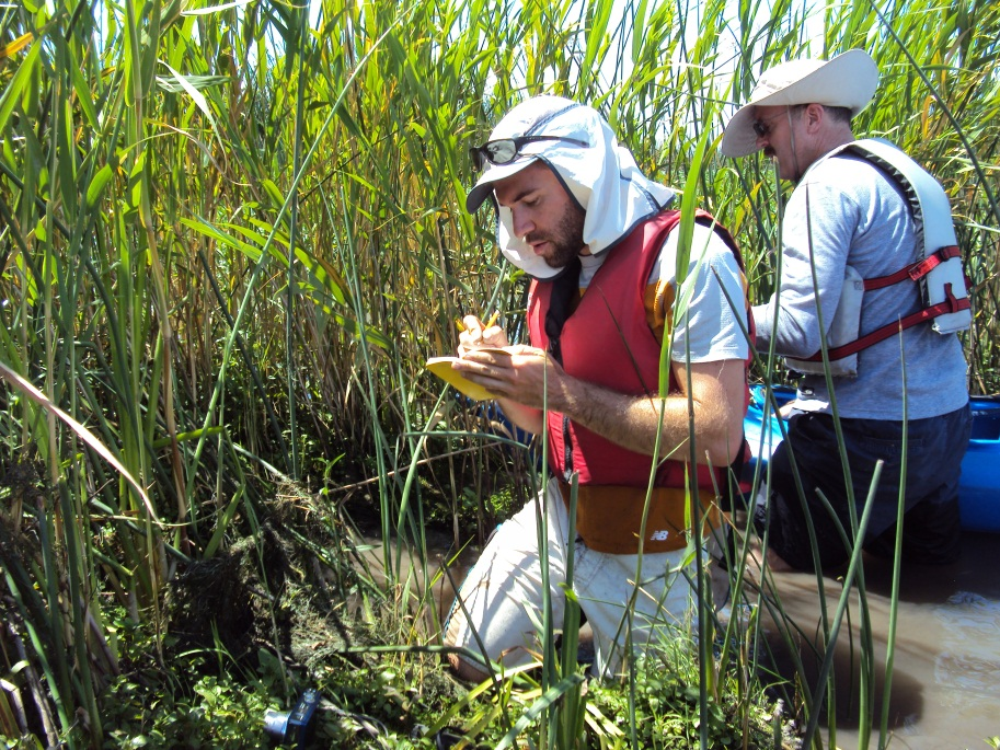 , Rivers for Change hunts for treasured plants, Rivers For Change