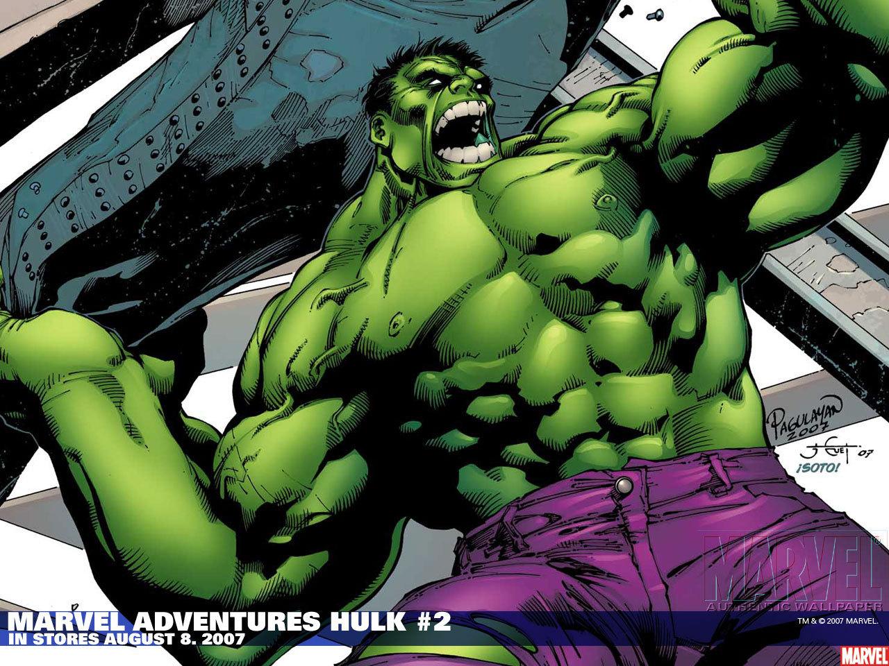 http://images2.fanpop.com/image/photos/14000000/Hulk-the-incredible-hulk-14044617-1280-960.jpg