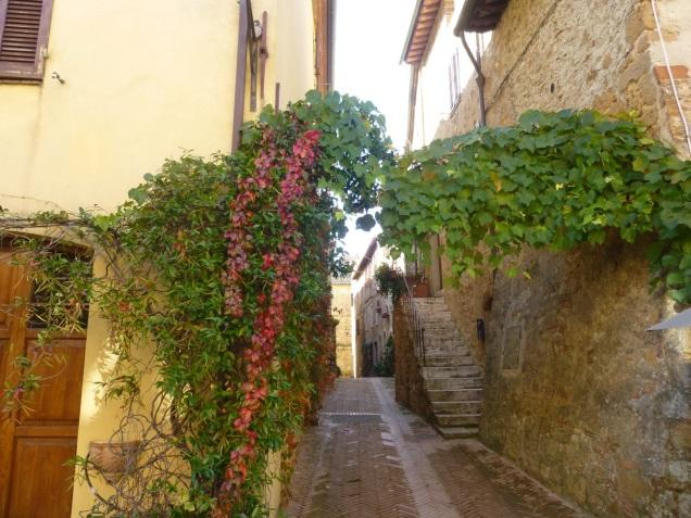 C:\Users\Gonzalo\Desktop\Documentos\Fotografías\La Toscana\103_PANA\103_PANA\P1030497.JPG