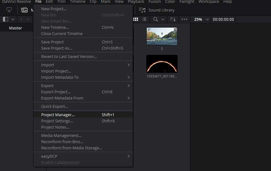 project manager in Davinci Resolve