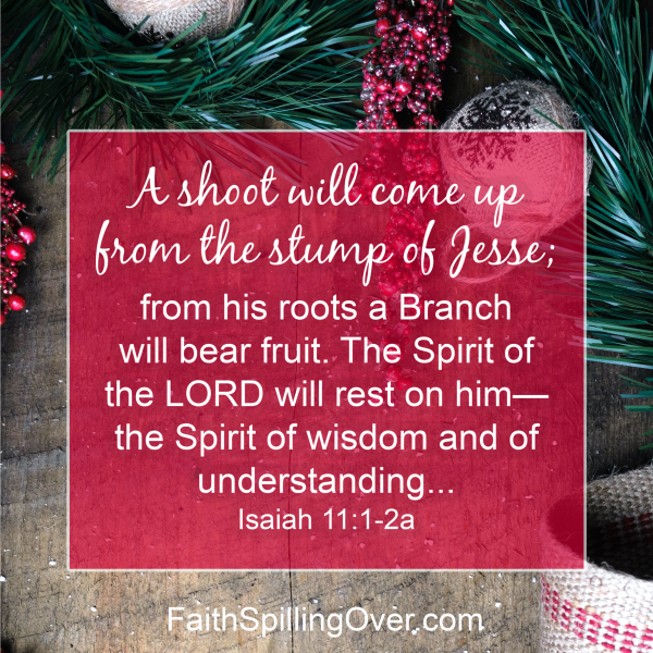 We could all use a promise of hope after the disappointments of 2020. A fresh look at a familiar #Advent Bible verse can renew our #hope today.