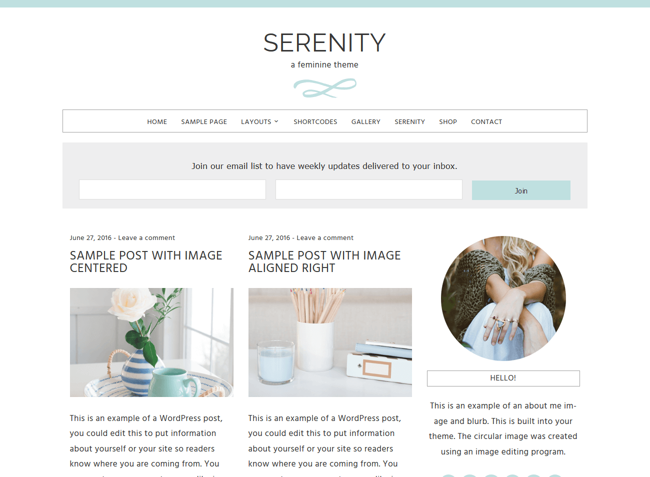 Serenity Template from Beautiful Dawn Designs - arelaxedgal.com