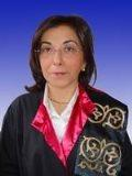 Prof. Dr. Işık AYDINLI