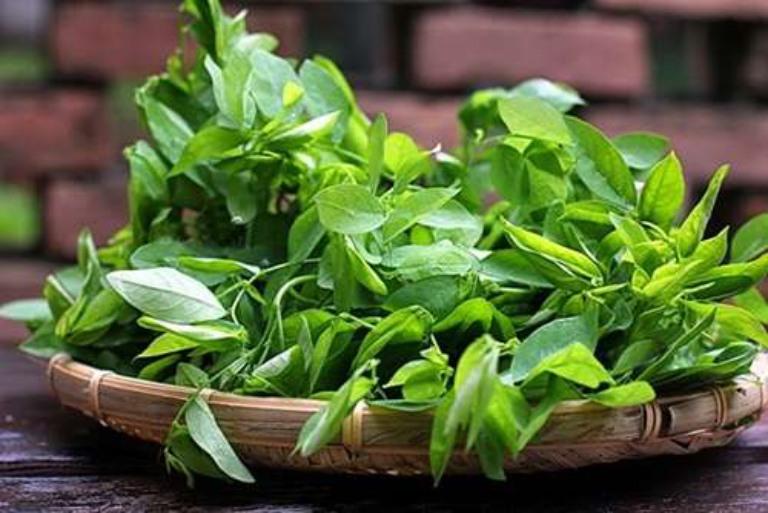 Dùng rau ngót để nấu ăn hoặc ép nước uống để cải thiện tình trạng yếu sinh lý nam