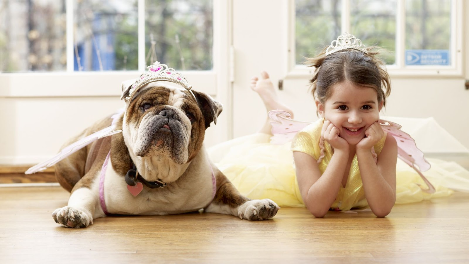 10 Best Small Dogs for Kids