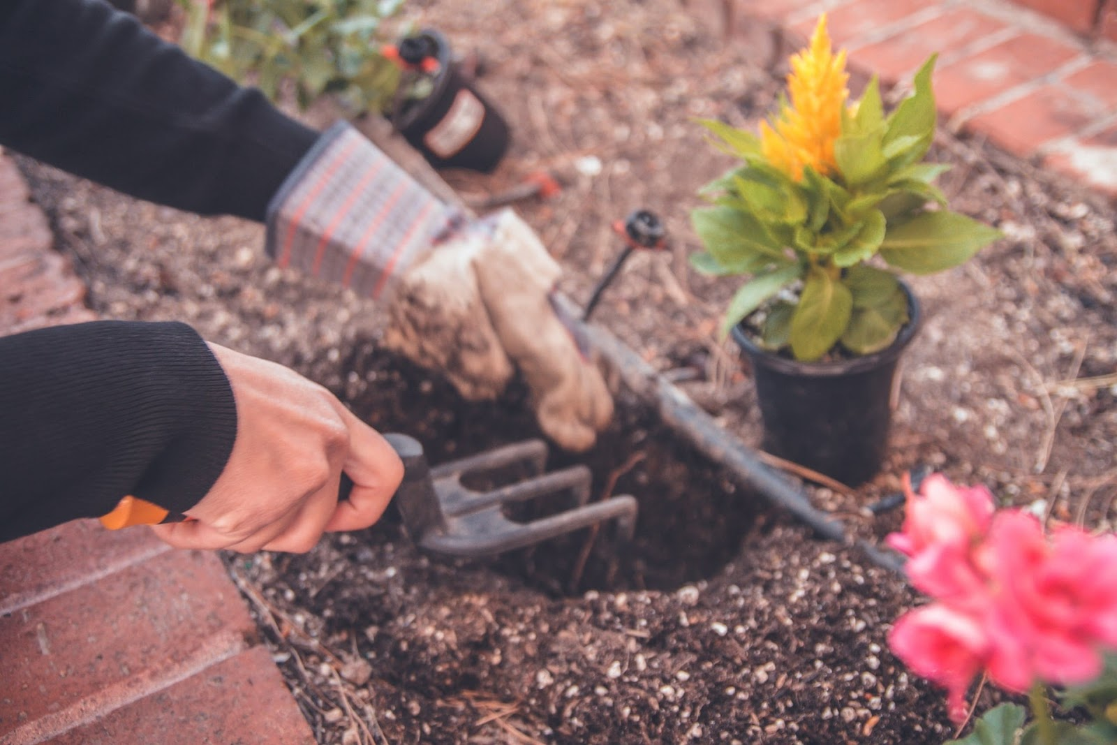 A person digging some mud; gardening is a form of exercise that helps you stay fit