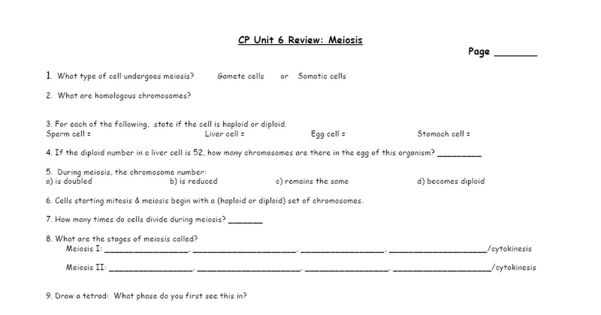 Meiosis Worksheet.doc   Google Docs