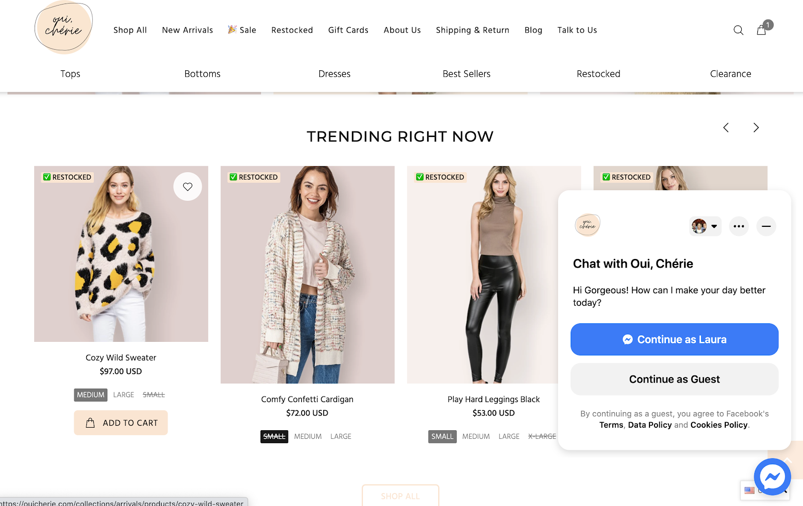 Customer chat window on ecommerce store