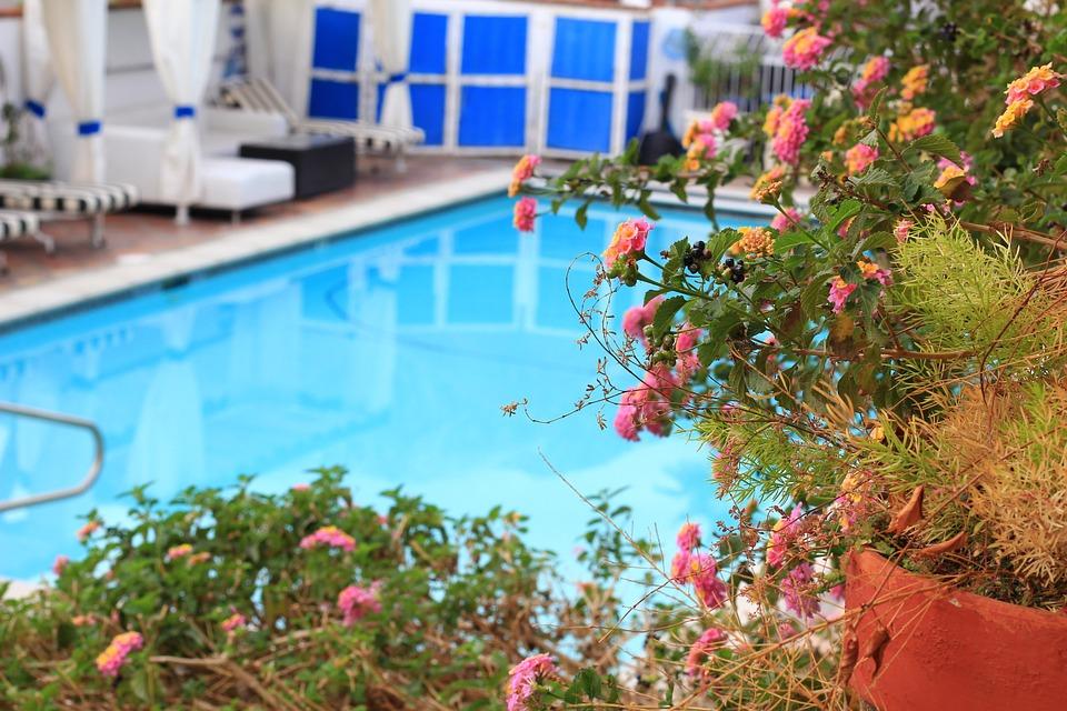 pool-954284_960_720.jpg