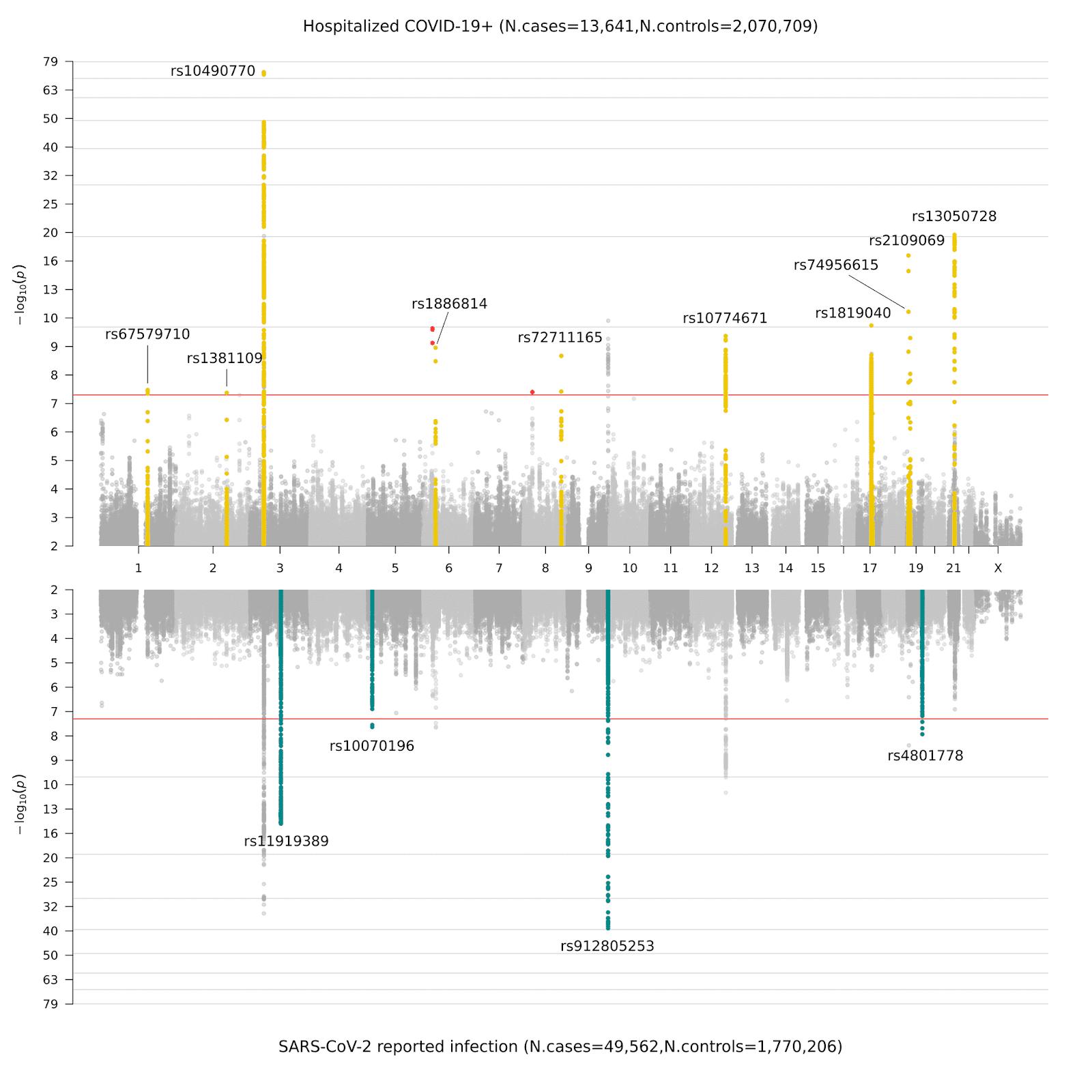 Figure 3. Miami plot of genome-wide association results for COVID-19.
